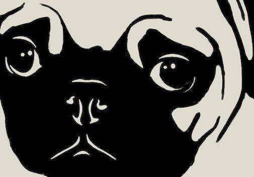 Voorpublicatie. 'Het jaar van de hond' van Eva Daeleman