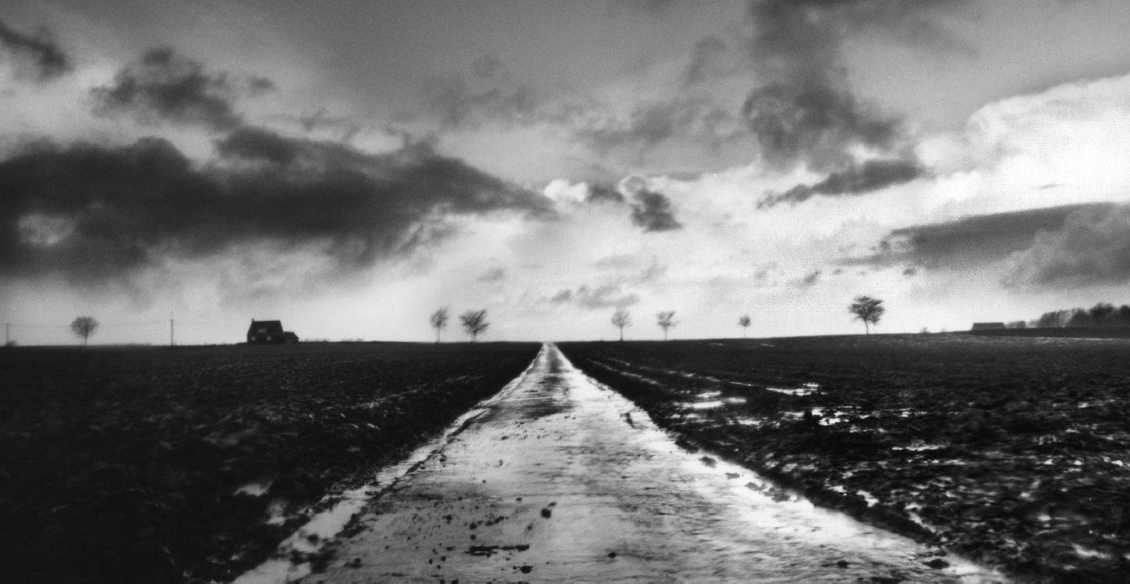 'Oorlog en terpentijn' genomineerd voor Man Booker International Prize