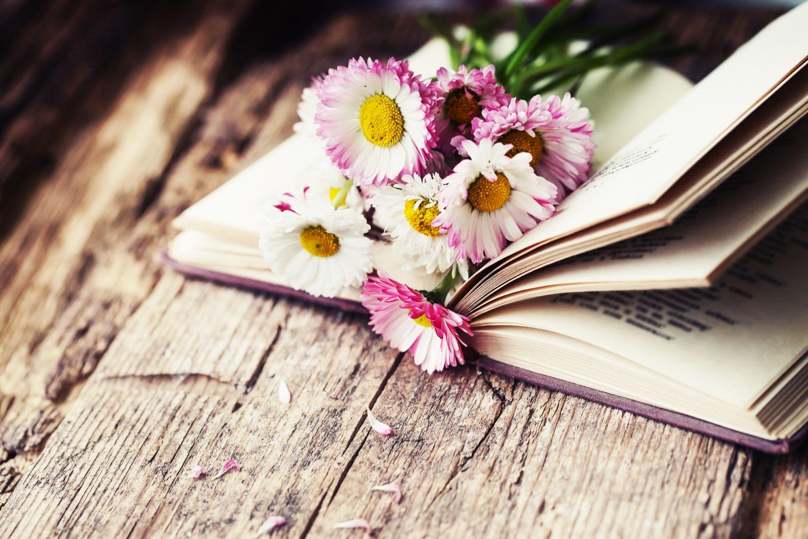 Moederdag Doe Je Moeder Deze Boeken Cadeau Standaard
