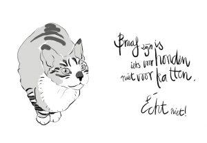 Katten-1