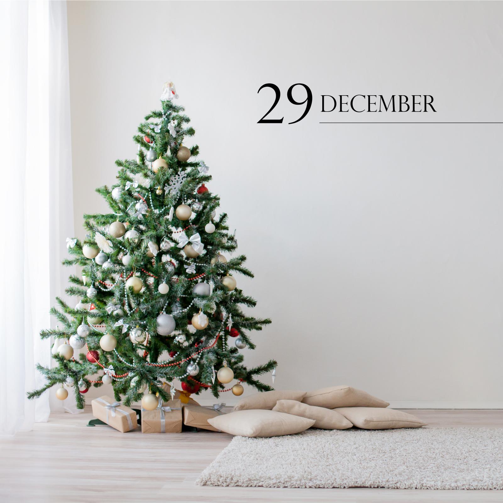 29 december