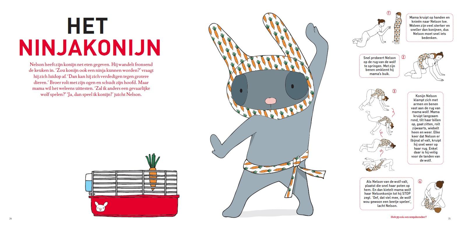 Ninjakonijn